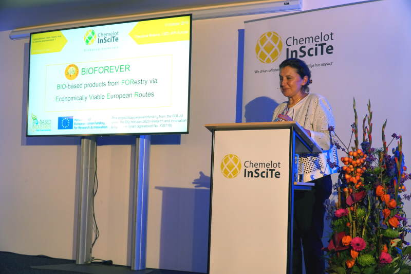 Theodora Retsina, API Europe CEO held a keynote lecture at 4th Chemelot InSciTe Annual Meeting