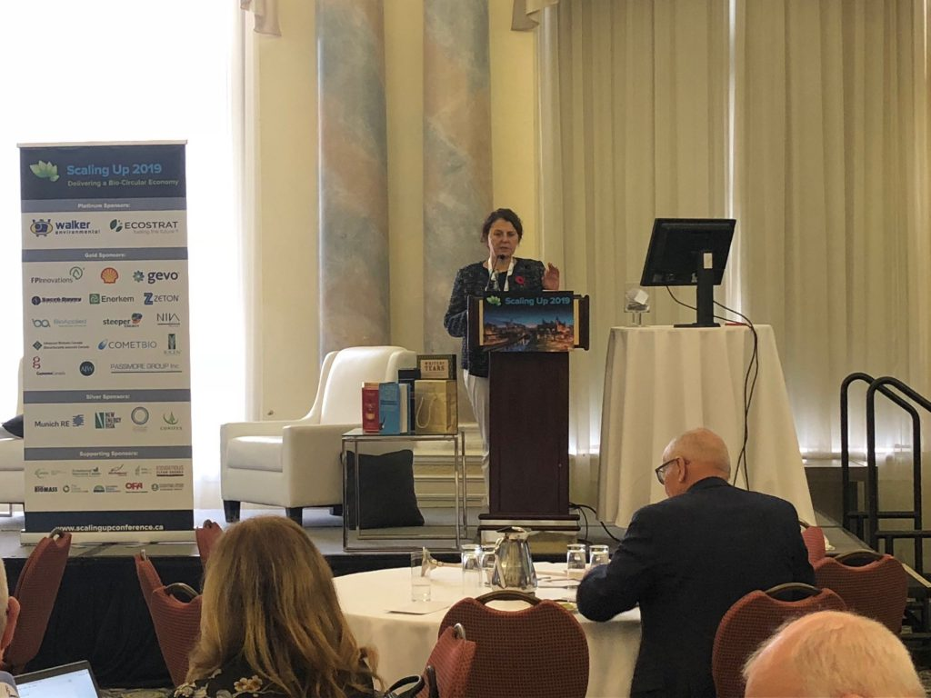 Theodora Retsina, CEO, API Europe, and American Process International LLC, gave a presentation at Scaling Up 2019 conference